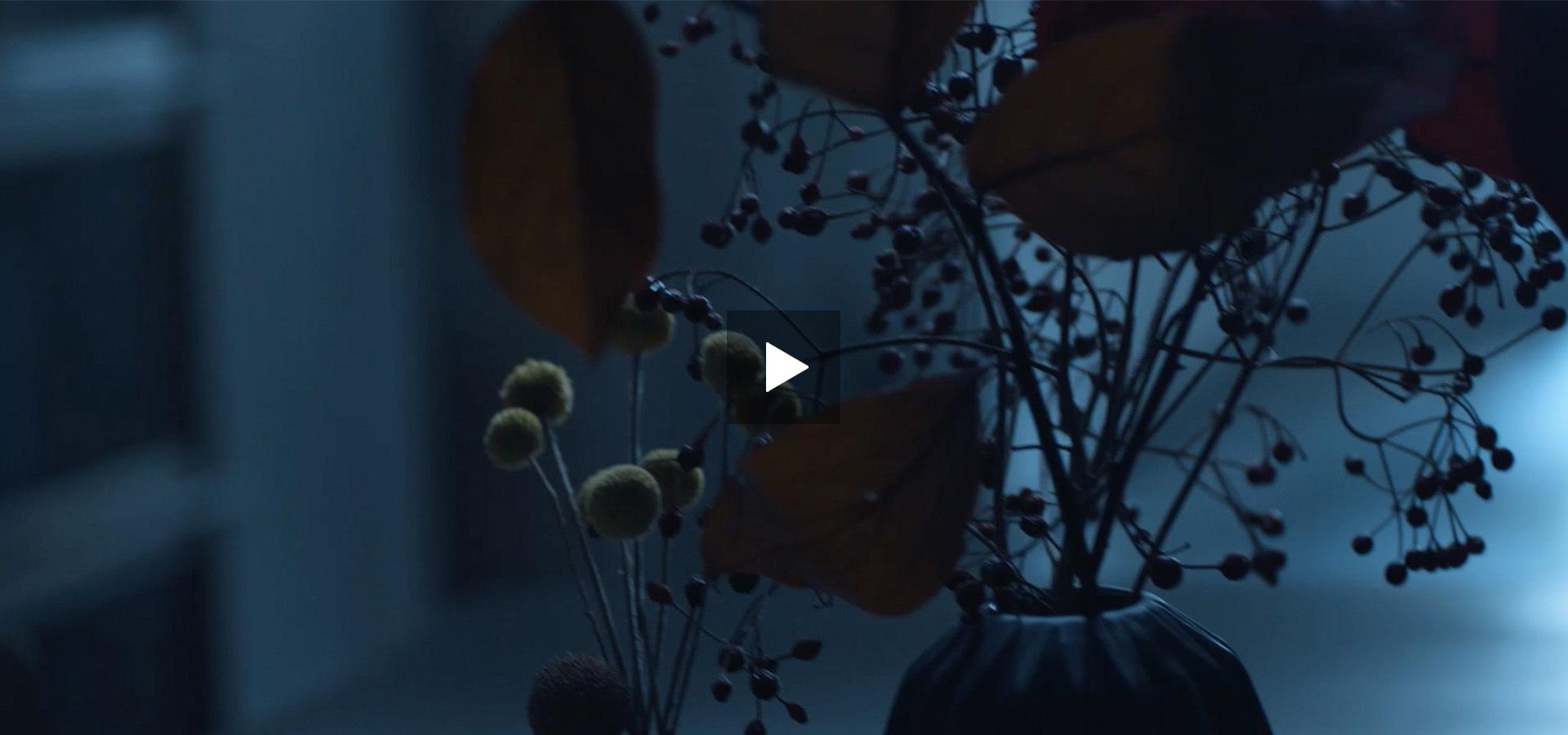 Monkey Talkie per A2A - Commercial - Spot TV - Pubblicità televisiva - Spot televisivo