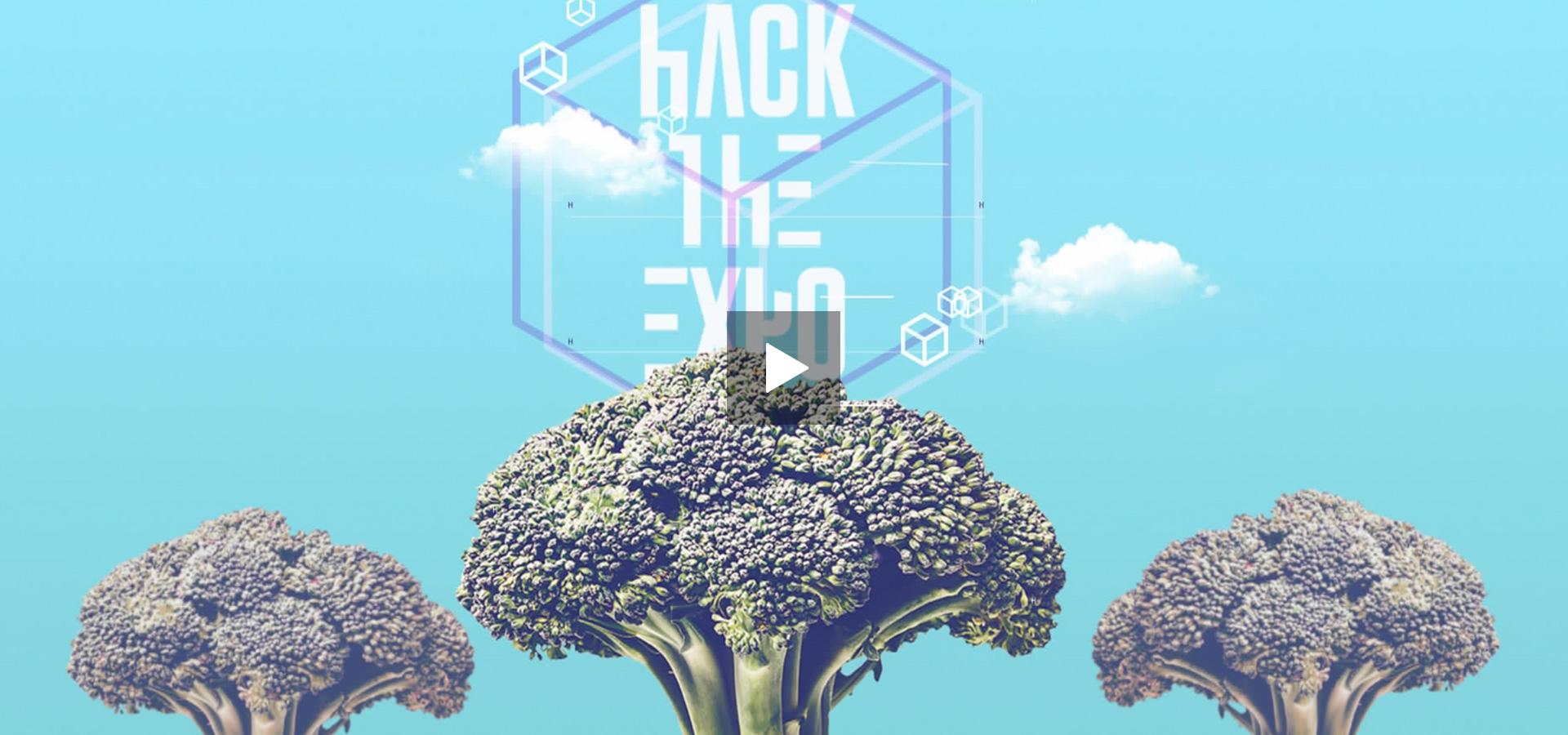 Monkey Talkie per Wired - Motiongraphic - Animazione 2d